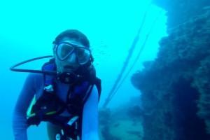 cropped-divingfortlauderdale2donaldmcallisterwreckoct2014.jpg